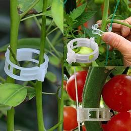 50/100pcs wielokrotnego użytku 25mm plastikowe klipsy wspierające rośliny zaciski dla roślin girlanda Garden szklarnia warzywa p