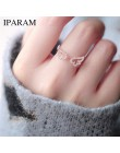 IPARAM regulowany Angel Wings pierścień Micro Pave cyrkon złoty kolorowe pierścienie dla kobiet modne pierścionki biżuteria bagu