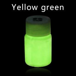 Świecące farby świecące w ciemności lśniące dla majsterkowiczów strona główna dekoracja liść zielony Pigment fosforowy farba akr