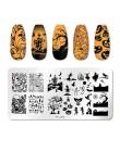 PICT YOU Flower geometria płytki do tłoczenia paznokci liście zwierząt DIY szablon obrazu do paznokci polski szablony do drukowa