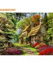 CHENISTORY bezramowe krajobraz wiejski obraz diy według numerów Acrtylic ręcznie malowany olejny malarstwo dla Home Decor 40x50c