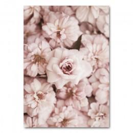 Kwiat róża botaniczny płótno plakat artystyczny styl skandynawski z dekoracyjnym nadrukiem malarstwo ścienne skandynawski obraz
