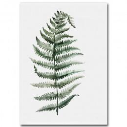 Akwarela roślina liście plakat drukuj dekoracja ścienna z krajobrazem obraz na płótnie do salonu Home Decor dekoracja kaktus
